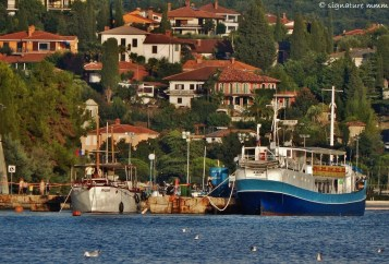 """""""Laho"""" in Portorož, Slovenia. We took her for a spin and a lunch. Buono!"""