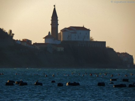 ... and from the other. Piran from Strunjan.