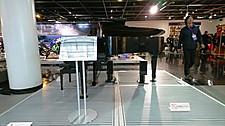 Dsc_2208