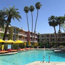 Saguaro Palm Springs Colorful Coachella Oasis