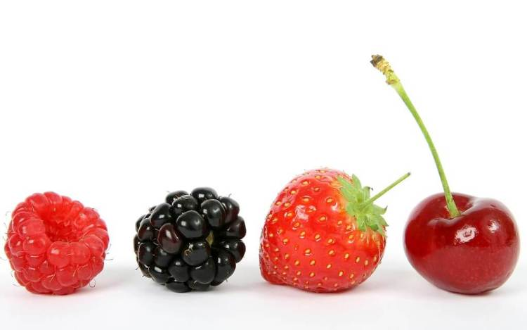 Change your snacking habits for better oral health and no tooth decay