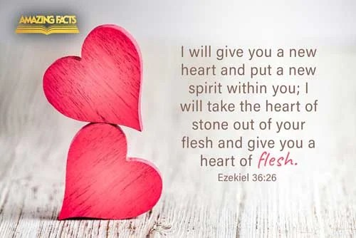 bible verse of the
