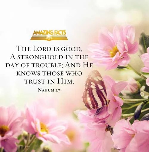 Nahum 1:7 - This Scripture Picture is provided courtesy of Amazing Facts. Visit us at www.amazingfacts.org