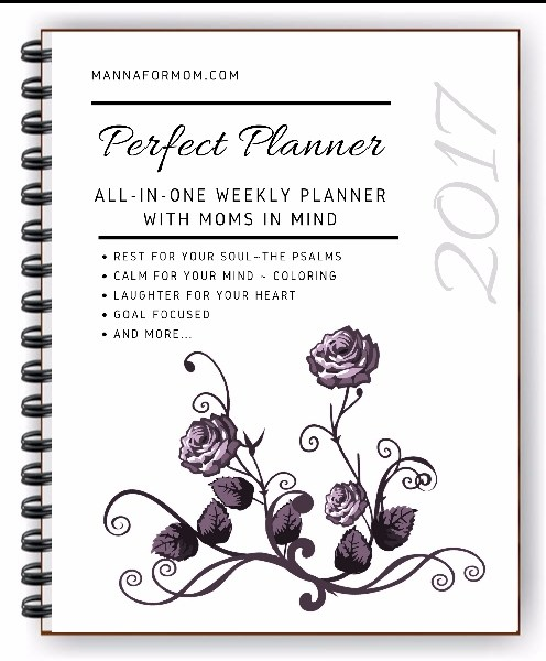 perfect planner for moms