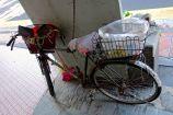 Multifunctional bike