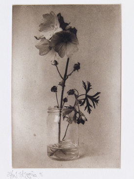 """""""Untitled"""", 1996. Photogravure, edition of 20. Image: 6 ⅛"""" x 4 ⅛"""", paper: 8 ½"""" x 6""""."""
