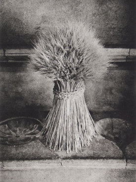 """Sheaf"", 2016. Photogravure, edition of 12. Image: 12"" x 8"", paper: 18"" x 14""."