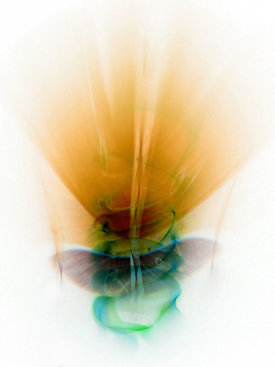 """Gael"", 2015. Archival pigment print, edition of 3. 48"" x 36""."