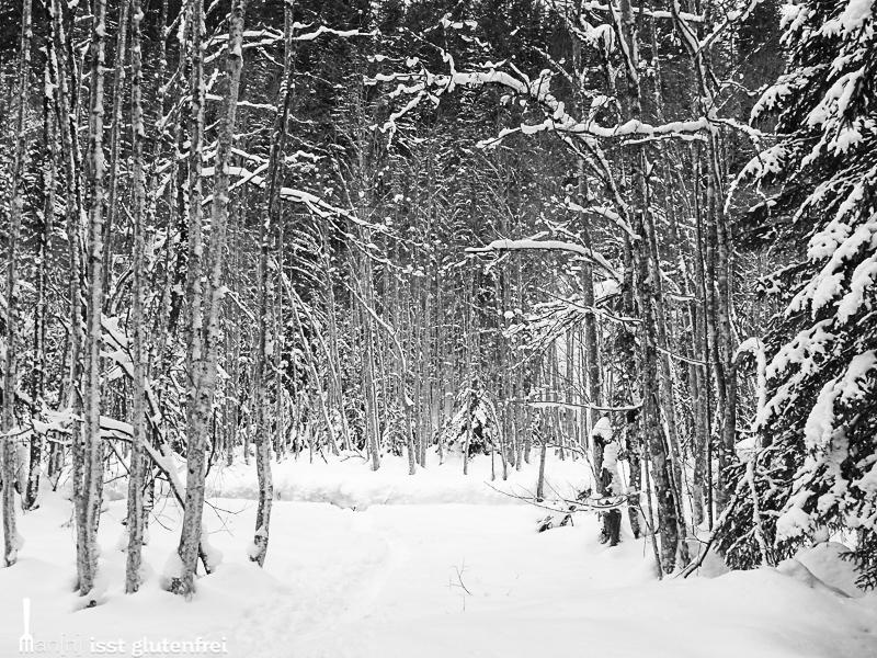 Tannheimer Tal Winterimpressionen
