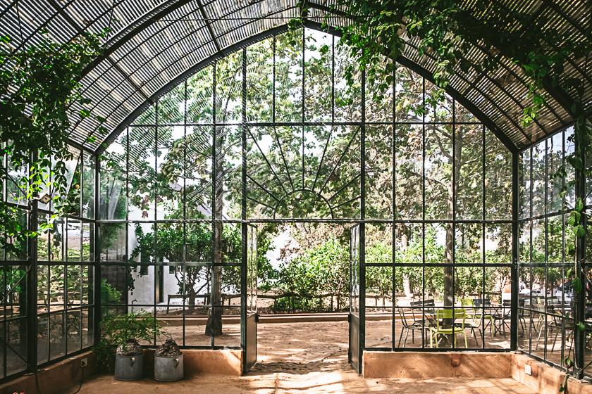 Babylonstoren Cape Dutch Farm Gewächshaus