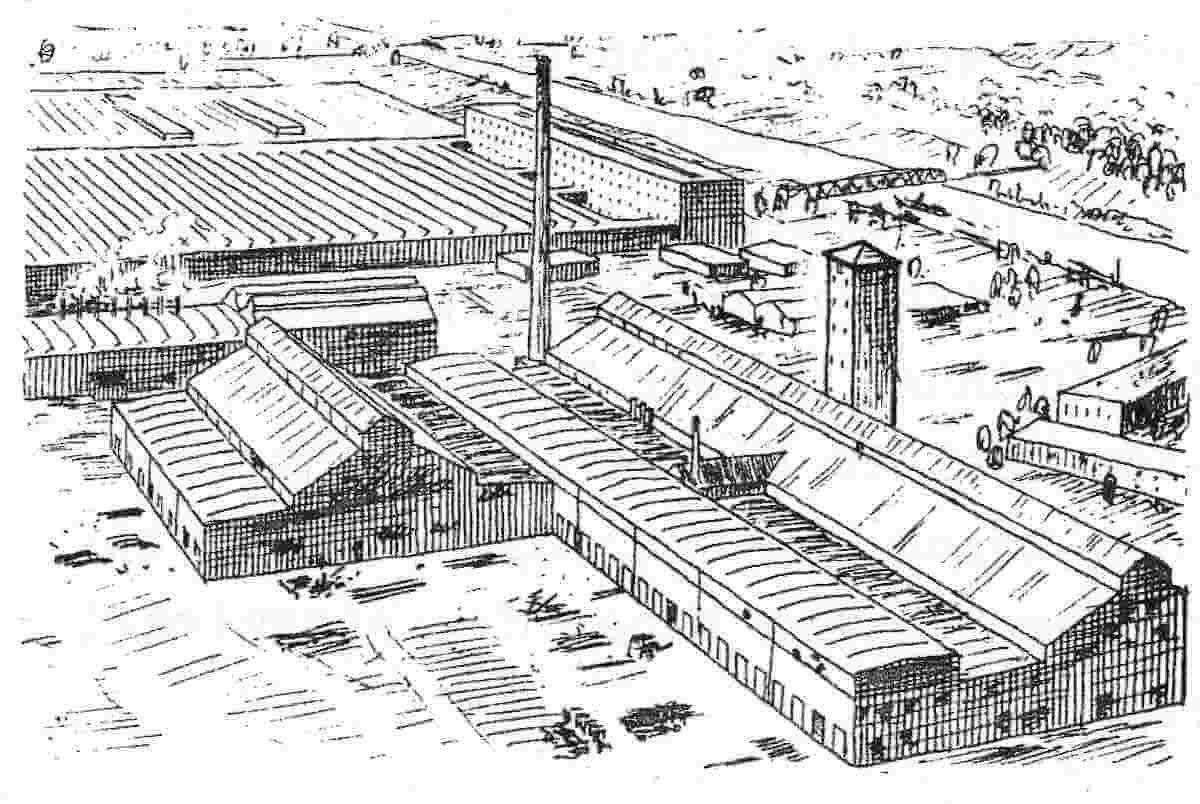 Mann mit Hut Touren: Industriekultur 1922 Gartenfeld Belgienhalle, Zeichnung