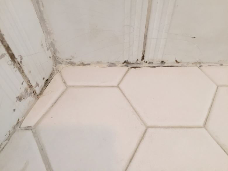 Mold in the corners, evidence of failure.