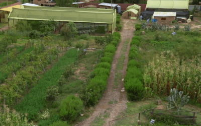 Video: Center for Ecological Agriculture (CEA) in Cochabamba, Bolivia