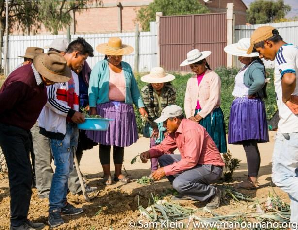 Mano a Mano engineer Victor Penarrieta (kneeling) demonstrates planting a seed.