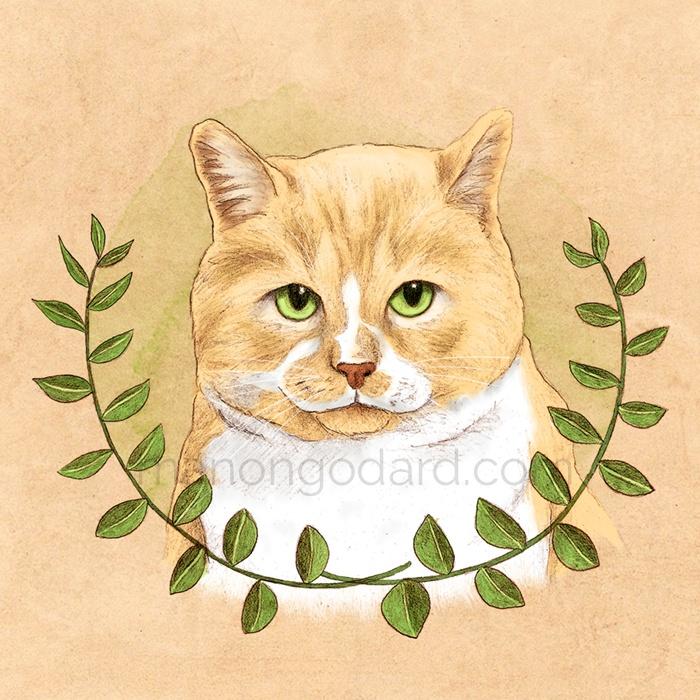Illustration «Le chat aux yeux verts» (+ vidéo making-of)