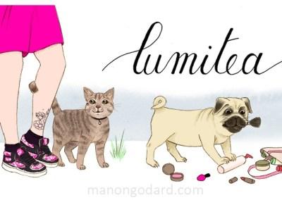 Bannière pour le blog Lumitea