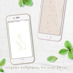 Free iPhone Wallpapers – Download Now