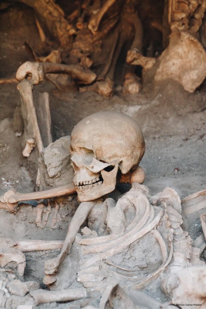 Herculaneum archaeological Site Naples Vesuvius