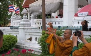 Biking Ayutthaya, Thailand