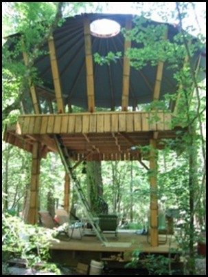 Yurt-Treehouse-Gainesville-Florida-Itchetucknee-River_thumb.jpg