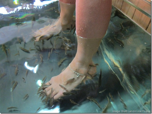 We went to the fish spa where the Doctor Fish eat the dead skin off your feet