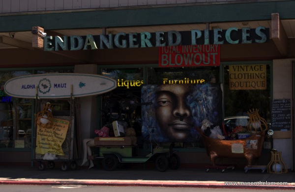 Endangered Pieces Store Maui