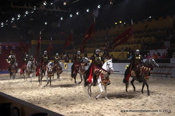 Horses-at-Medieval-Times-Orlando-Florida.jpg