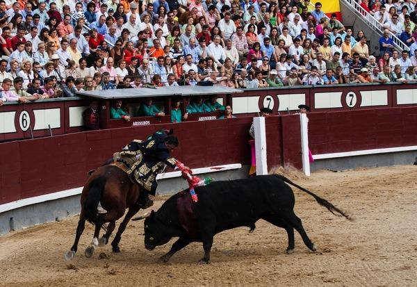 Bulfighting in Madrid Spain