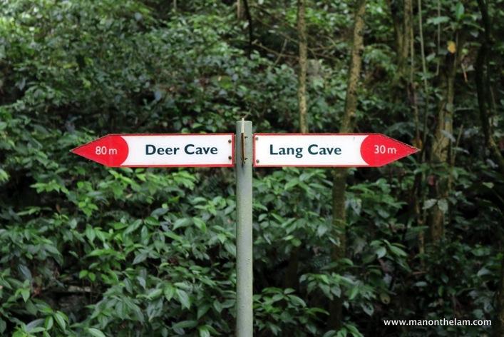 Gunung Mulu National Park  Mulu Caves Sarawak Borneo Malaysia 056