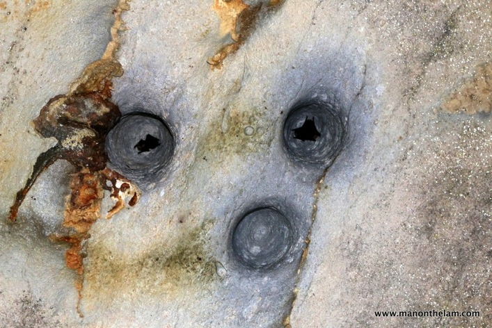 Gunung Mulu National Park  Mulu Caves Sarawak Borneo Malaysia 063