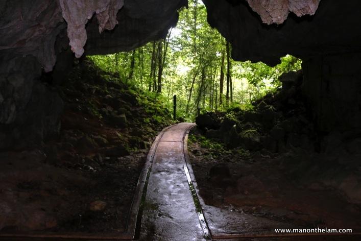 Gunung Mulu National Park  Mulu Caves Sarawak Borneo Malaysia 099