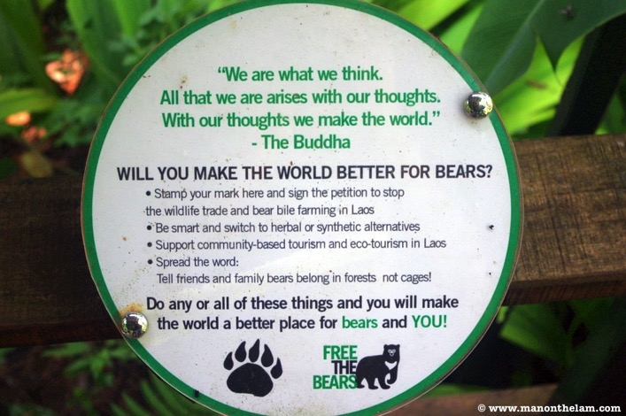 Free the Bears Laos Rescue Centre what can you do to help the bears
