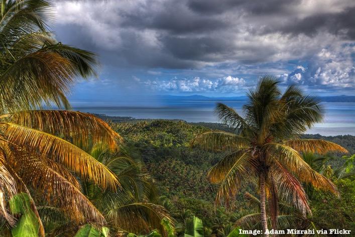 Jungle Dominican Republic