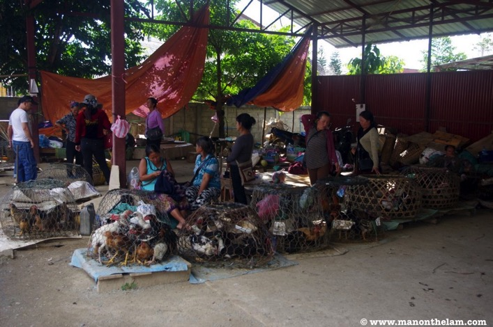 Phonsavan Laos wet market row of chickens in cages