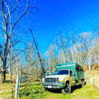 Manor Tree Service on tree removal site