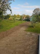 Removal of boundary hedge+ roots at wix 2