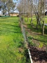 Taking down existing boundary fence2