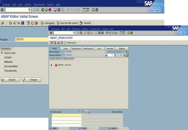ABAP : Introduction for Beginners