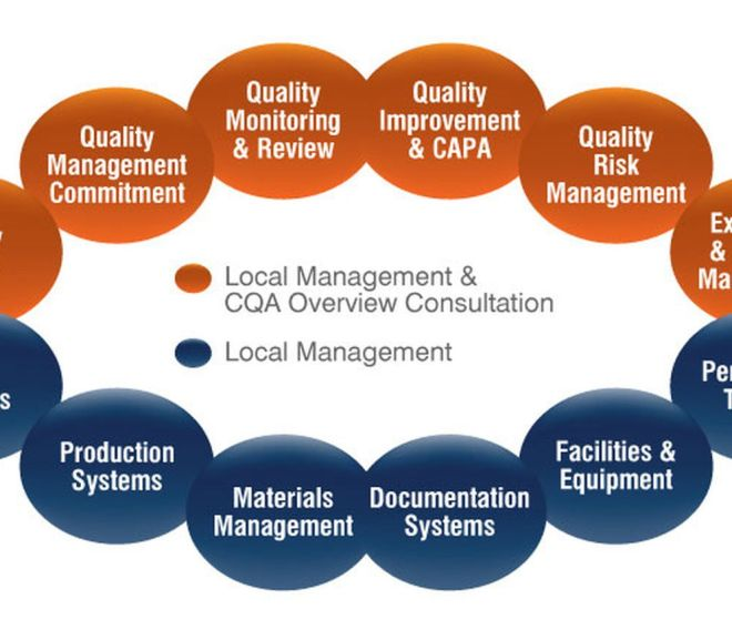 Quality Assurance – Responsibilities