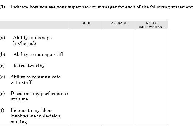 Company CULTURE SURVEY – Free Word Document Download