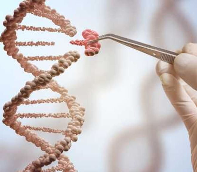 QUESTIONS AND ANSWERS ABOUT CRISPR