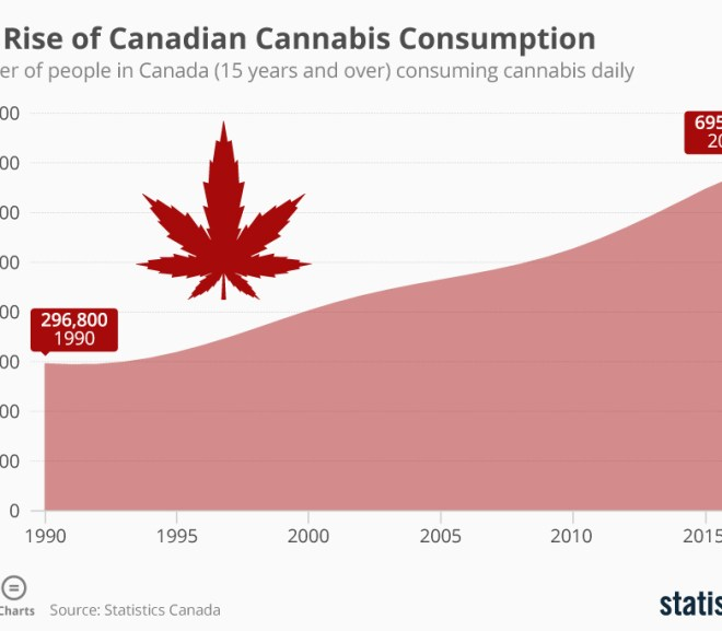 The Rise of Canadian Cannabis Consumption