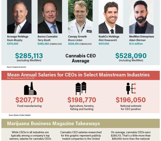 Cannabis industry CEO salaries