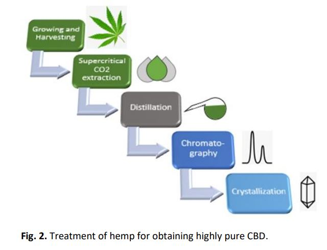 Highly pure Cannabidiol (CBD) by twin-column chromatography (MCSGP)