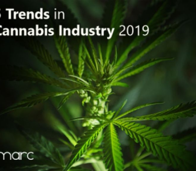 Top 5 Trends that will shape Cannabis Industry 2019