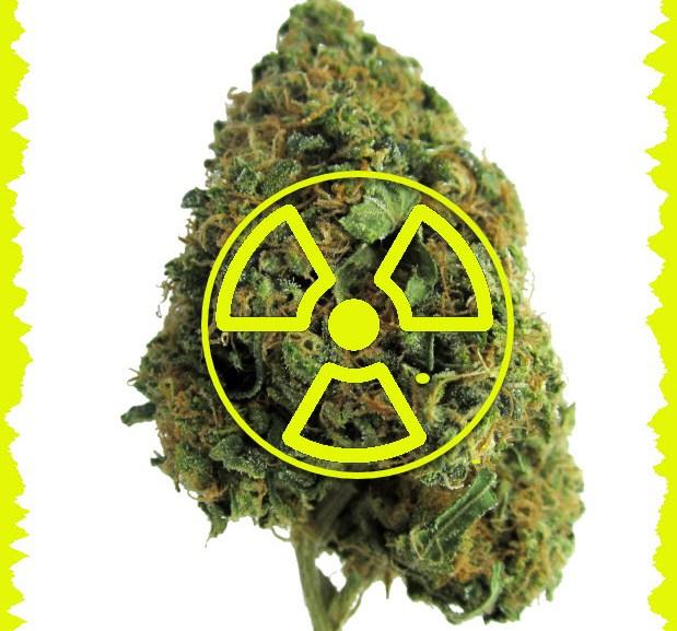 Is Your Cannabis Radioactive?