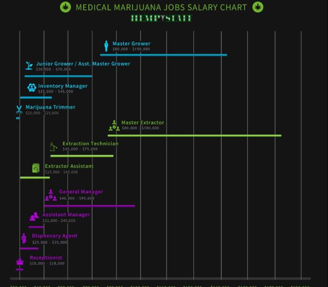 Cannabis Jobs – Salary Chart