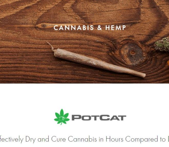 Effectively Dry and Cure Cannabis in Hours Compared to Days