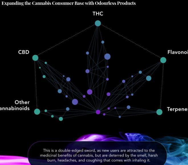 Expanding the Cannabis Consumer