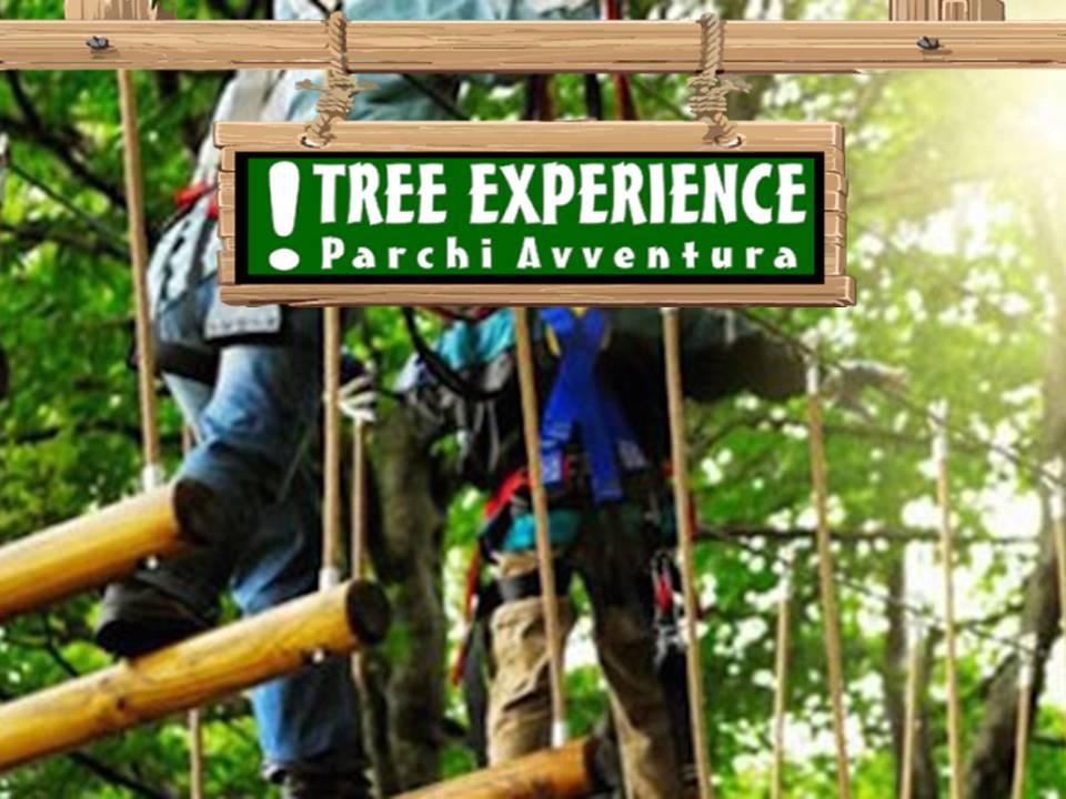 Tree Experience - Parco Avventure Milano (1)